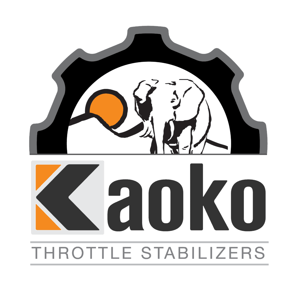 Kaoko Throttle Stabilizer